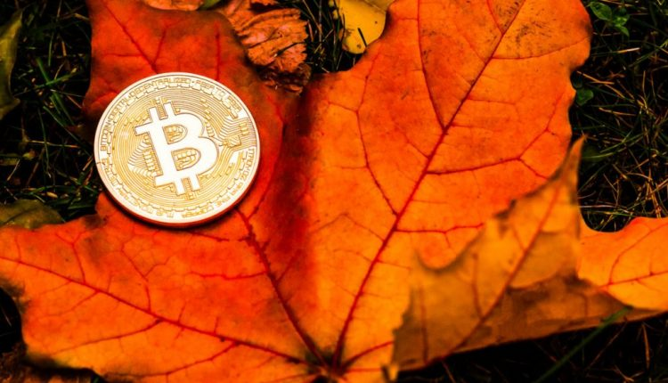 Should Bitcoin Investors Be Thankful It's Thanksgiving?