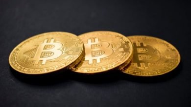 bitcoin-etf-receives-approval-from-sec,-marking-historic-day-for-crypto
